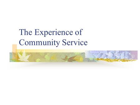 The Experience of Community Service. Experience of Community Service.