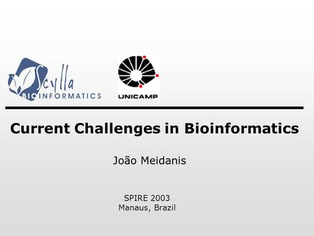 Current Challenges <strong>in</strong> Bioinformatics SPIRE 2003 Manaus, Brazil João Meidanis.