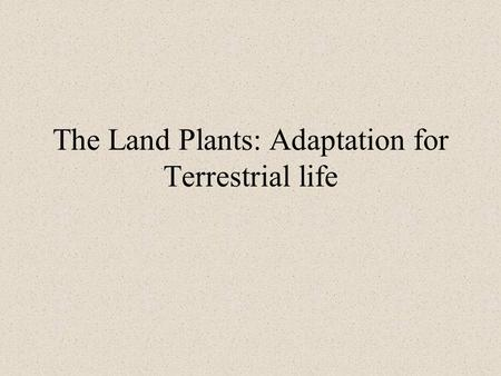 The Land Plants: Adaptation for Terrestrial life.