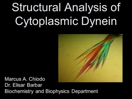 Structural Analysis of Cytoplasmic Dynein Marcus A. Chiodo Dr. Elisar Barbar Biochemistry and Biophysics Department.