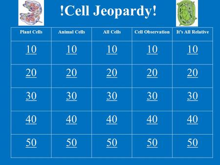 !Cell Jeopardy! Plant CellsAnimal CellsAll CellsCell ObservationIt's All Relative 10 20 30 40 50.