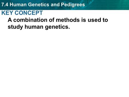 KEY CONCEPT  A combination of methods is used to study human genetics.