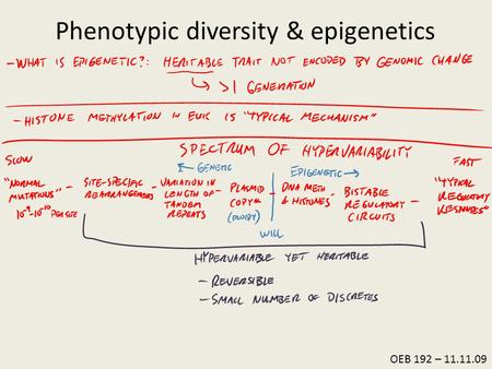 OEB 192 – 11.11.09 Phenotypic diversity & epigenetics.