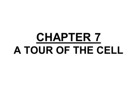 CHAPTER 7 A TOUR OF THE CELL. Copyright © 2002 Pearson Education, Inc., publishing as Benjamin Cummings Section A: How We Study Cells 1.Microscopes provide.