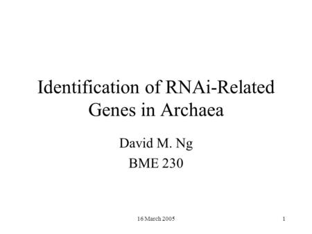 16 March 20051 Identification of RNAi-Related Genes in Archaea David M. Ng BME 230.
