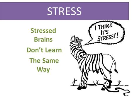 Stressed Brains Don't Learn The Same Way STRESS. 30 seconds.