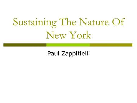 Sustaining The Nature Of New York Paul Zappitielli.