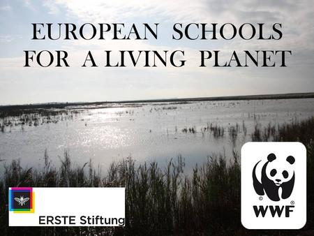 2.11.09 EUROPEAN SCHOOLS FOR A LIVING PLANET. 2.11.09 ACTIONS DO MORE THAN WORDS!