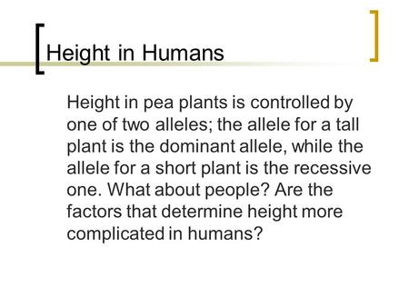Height in Humans Height in pea plants is controlled by one of two alleles; the allele for a tall plant is the dominant allele, while the allele for a short.