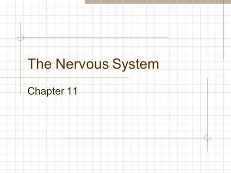 The Nervous System Chapter 11. Functions of the Nervous system I Sensory (input): Light Sound Touch Temperature Taste Smell Internal Chemical Pressure.