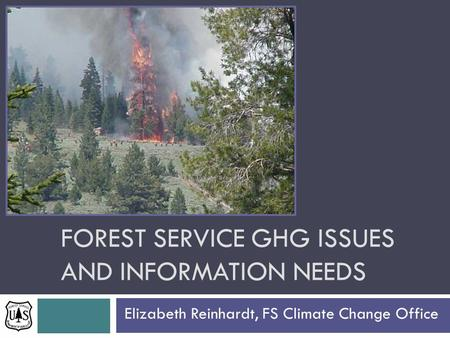FOREST SERVICE GHG ISSUES AND INFORMATION NEEDS Elizabeth Reinhardt, FS Climate Change Office.