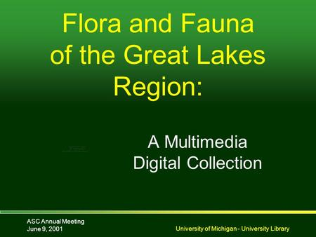 ASC Annual Meeting June 9, 2001University of Michigan - University Library Flora and Fauna of the Great Lakes Region: A Multimedia Digital Collection.