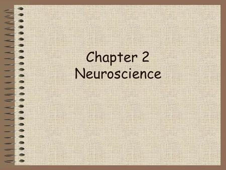 Chapter 2 Neuroscience.