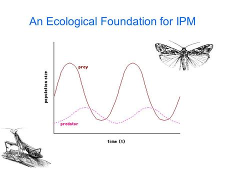 An Ecological Foundation for IPM. Island Biogeography.
