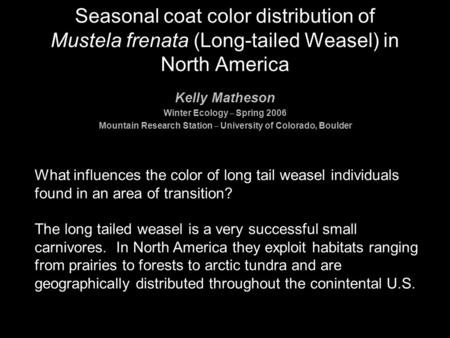 Seasonal coat color distribution of Mustela frenata (Long-tailed Weasel) in North America What influences the color of long tail weasel individuals found.