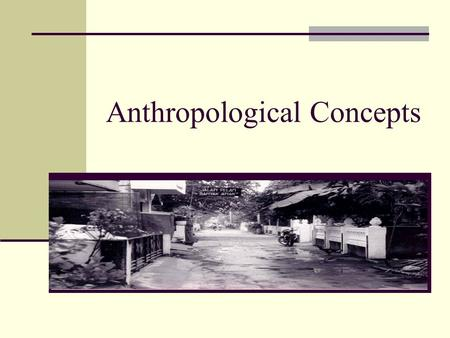 Anthropological Concepts. Fundamental Concepts & Principles Holism Function Relativism Comparison Structure Adaptation Culture.