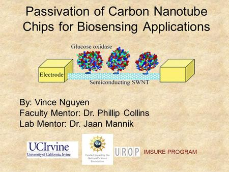 Passivation of Carbon Nanotube Chips for Biosensing Applications By: Vince Nguyen Faculty Mentor: Dr. Phillip Collins Lab Mentor: Dr. Jaan Mannik IMSURE.