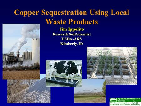 Copper Sequestration Using Local Waste Products Jim Ippolito Research Soil Scientist USDA-ARS Kimberly, ID.