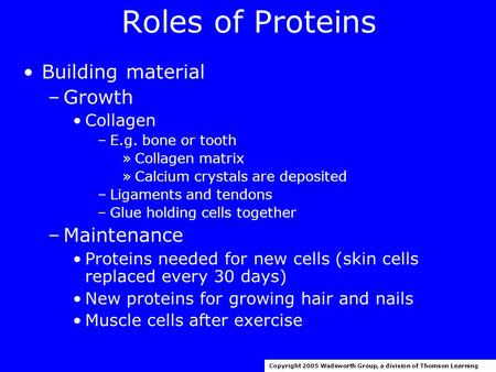 Roles of Proteins Building material –Growth Collagen –E.g. bone or tooth »Collagen matrix »Calcium crystals are deposited –Ligaments and tendons –Glue.