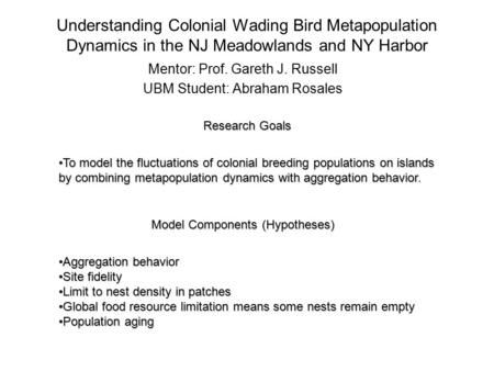 Understanding Colonial Wading Bird Metapopulation Dynamics in the NJ Meadowlands and NY Harbor Mentor: Prof. Gareth J. Russell UBM Student: Abraham Rosales.