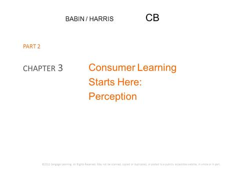 Consumer Learning Starts Here: Perception