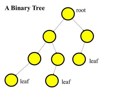 A Binary Tree root leaf. A Binary Tree root leaf descendent of root parent of leaf.