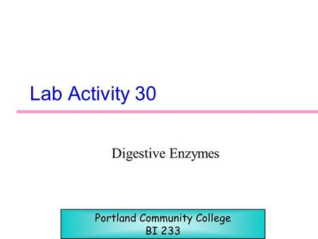 Lab Activity 30 Digestive Enzymes Portland Community College BI 233.