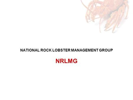 NATIONAL ROCK LOBSTER MANAGEMENT GROUP NRLMG. Multi-sector stakeholder representation –Customary –Amateur –Environment and Conservation –Commercial –Ministry.
