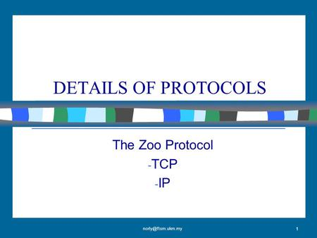 1 DETAILS OF PROTOCOLS The Zoo Protocol - TCP - IP.