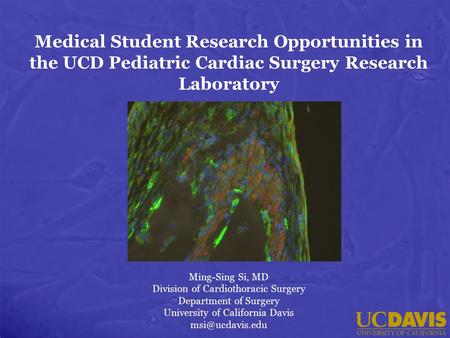 Medical Student Research Opportunities in the UCD Pediatric Cardiac Surgery Research Laboratory Ming-Sing Si, MD Division of Cardiothoracic Surgery Department.