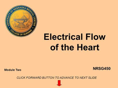 Electrical Flow of the Heart NRSG450 Module Two CLICK FORWARD BUTTON TO ADVANCE TO NEXT SLIDE.