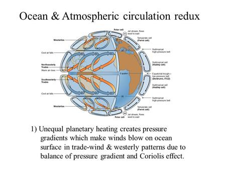 Ocean & Atmospheric circulation redux 1) Unequal planetary heating creates pressure gradients which make winds blow on ocean surface in trade-wind & westerly.