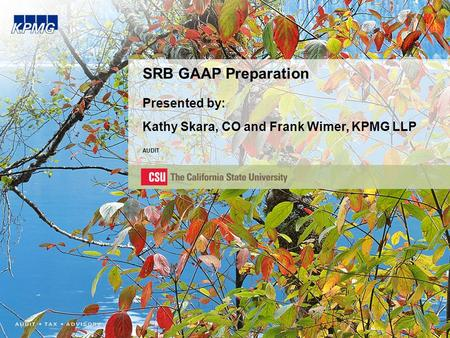 SRB GAAP Preparation Presented by: Kathy Skara, CO and Frank Wimer, KPMG LLP AUDIT.