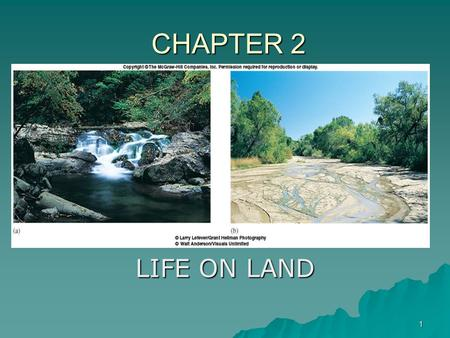 CHAPTER 2 LIFE ON LAND.