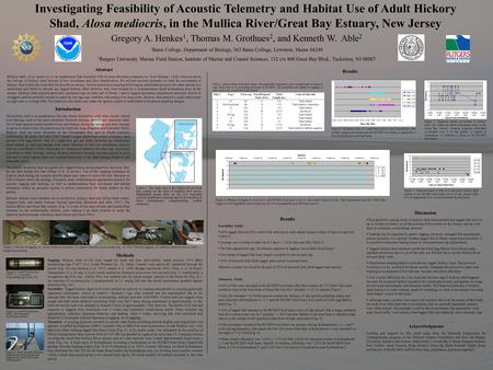 Investigating Feasibility of Acoustic Telemetry and Habitat Use of Adult Hickory Shad, Alosa mediocris, in the Mullica River/Great Bay Estuary, New Jersey.