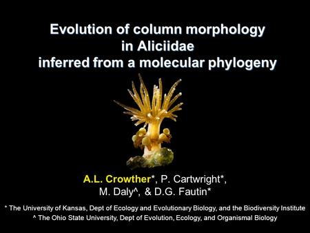 Evolution of column morphology in Aliciidae inferred from a molecular phylogeny A.L. Crowther*, P. Cartwright*, M. Daly^, & D.G. Fautin* * The University.