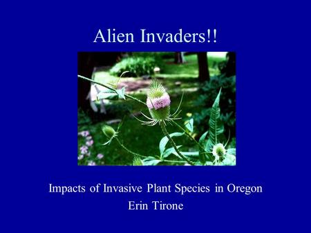 Alien Invaders!! Impacts of Invasive Plant Species in Oregon Erin Tirone.
