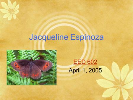 Jacqueline Espinoza EED 602 April 1, 2005 The Life Cycle of a Butterfly The Butterfly has many stages in it's life.
