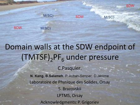 Domain walls at the SDW endpoint of (TMTSF) 2 PF 6 under pressure C.Pasquier, Laboratoire de Physique des Solides, Orsay S. Brazovskii LPTMS, Orsay Acknowledgments: