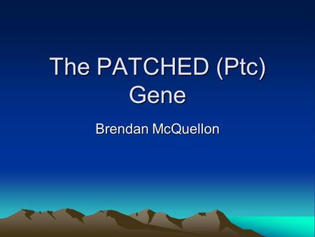 The PATCHED (Ptc) Gene Brendan McQuellon. What is PATCH Transmembrane surface receptor Binds ligands of Hedgehog(Hh) family Weinberg, 2007.