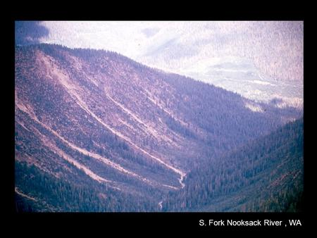 S. Fork Nooksack River, WA. Reasons for Land Clearing Agriculture Lumber Mining Urban Development.