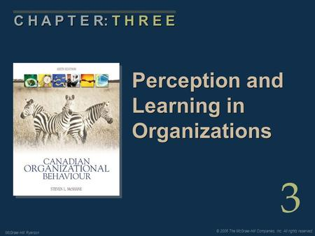 © 2006 The McGraw-Hill Companies, Inc. All rights reserved. McGraw-Hill Ryerson 3 C H A P T E R: T H R E E Perception and Learning in Organizations.