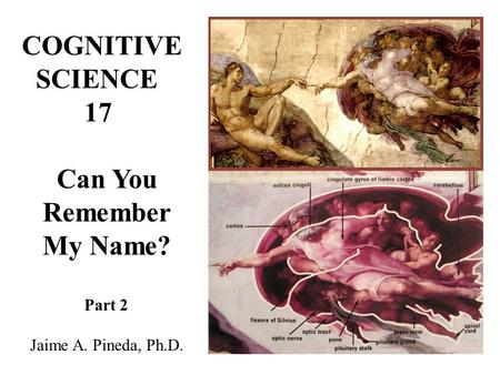 COGNITIVE SCIENCE 17 Can You Remember My Name? Part 2 Jaime A. Pineda, Ph.D.