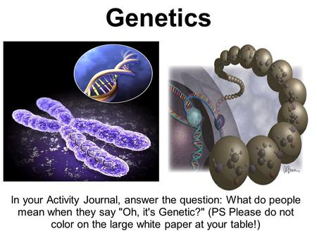 Genetics In your Activity Journal, answer the question: What do people mean when they say Oh, it's Genetic? (PS Please do not color on the large white.