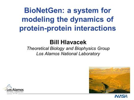 BioNetGen: a system for modeling the dynamics of protein-protein interactions Bill Hlavacek Theoretical Biology and Biophysics Group Los Alamos National.