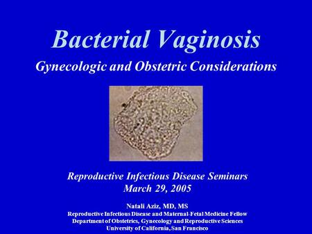 Bacterial Vaginosis Gynecologic and Obstetric Considerations Reproductive Infectious Disease Seminars March 29, 2005 Natali Aziz, MD, MS Reproductive Infectious.