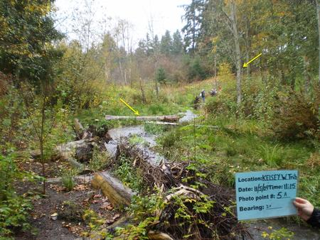 Location West Tributary Kelsey Creek Photo Point 5A Camera Point 5 Bearing 20 ̊ Goal Monitor stream restoration project Duration 10 years Regime 1 time.