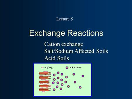 Exchange Reactions Cation exchange Salt/Sodium Affected Soils Acid Soils Lecture 5.