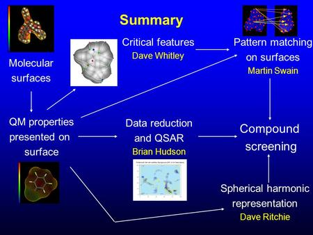 Summary Molecular surfaces QM properties presented on surface Compound screening Pattern matching on surfaces Martin Swain Critical features Dave Whitley.