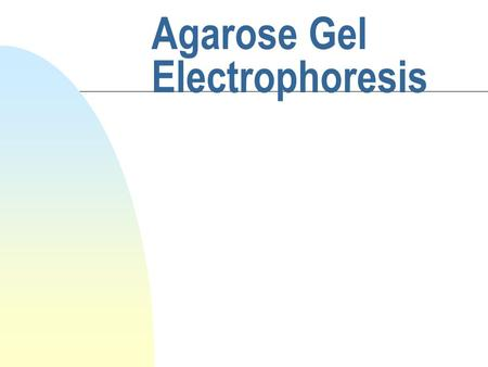 Agarose Gel Electrophoresis. What does gel electrophoresis do? n employs electromotive force to move molecules through a porous gel n separates molecules.